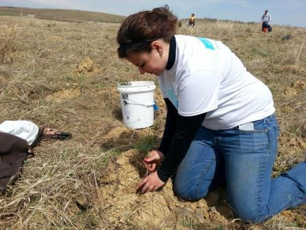 Wildlife Technology student Sara Heverly plants a seedling on the Flight 93 Memorial property in Shanksville. (Provided photo)