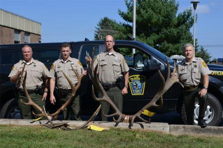 Clearfield County Historical Society Receives Trophy Elk for Display