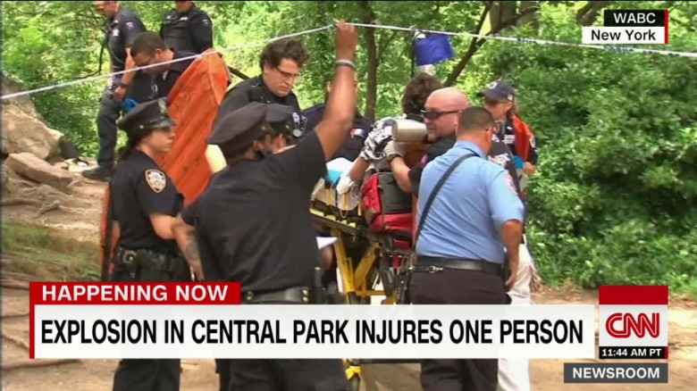 Explosives ingredients found in Central Park device