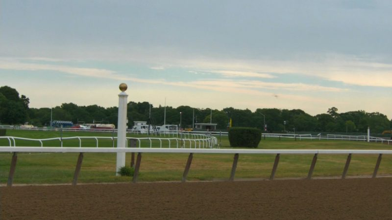 Japanese horse Epicharis scratched from Belmont Stakes