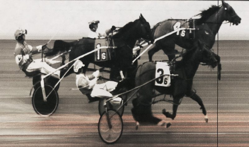 Schadel Driving Toward Fair Harness Racing Trophy
